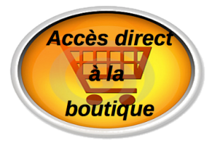 AccesBoutique_burned