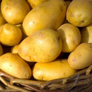pomme-de-terre-spunta